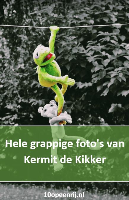 Hele grappige fotos van Kermit de kikker