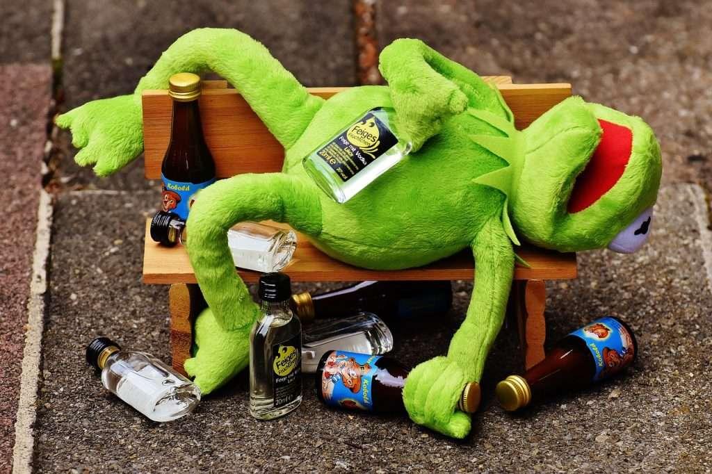 Kermit is dronken grappige foto's van Kermit de Kikker