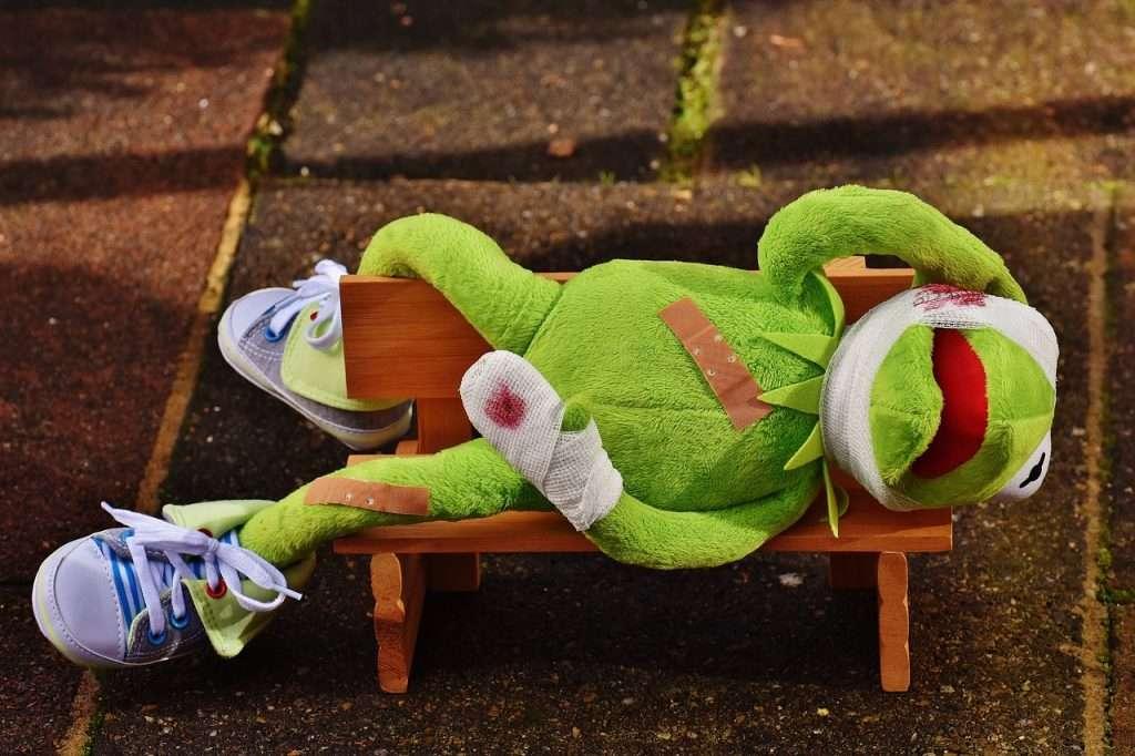 Kermit is in elkaar geslagen in het park grappige foto's van Kermit de Kikker