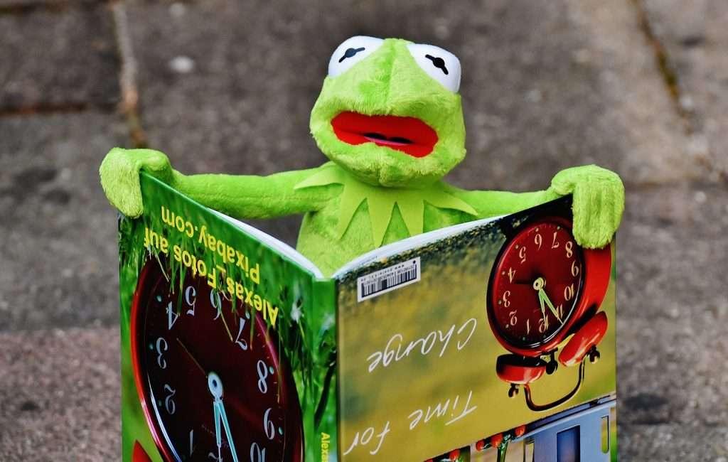 Kermit leest een boek