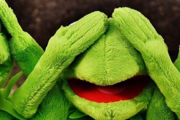 banner grappige kermit