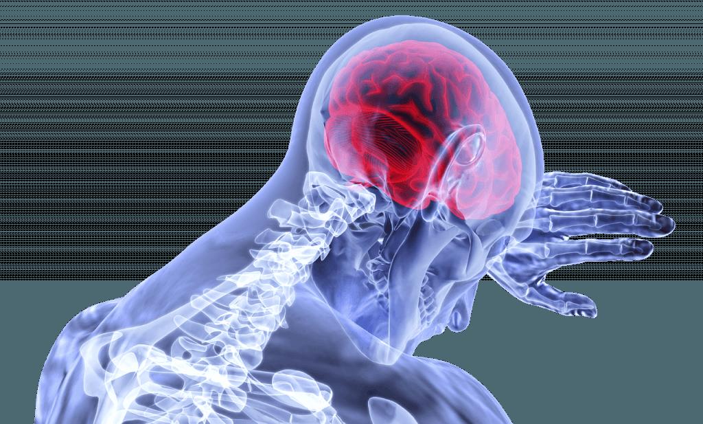 Je grbuikt je hersens helemaal en volledig