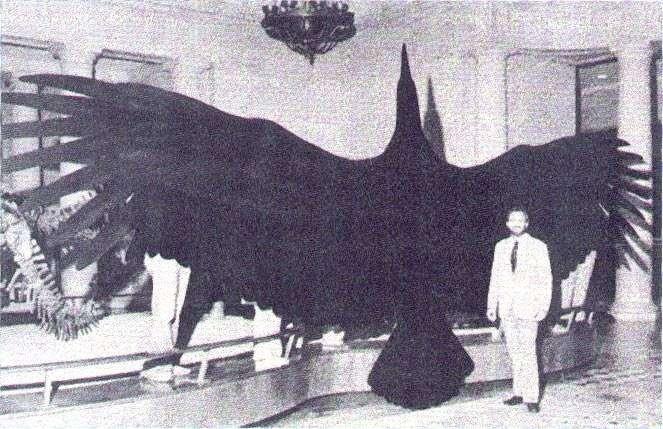 Argentavis Magnificens - Aller grootste dieren op een rij