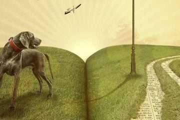 Banner beste kinderboeken